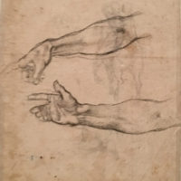 Michelangelo's_arm_study